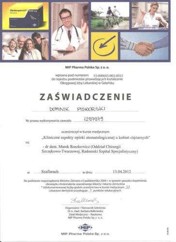 2012-04-13-MIP